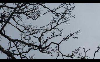 Screen Shot 2014-12-08 at 02.03.02