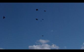Screen Shot 2014-12-08 at 02.03.46