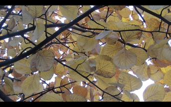 Screen Shot 2014-12-08 at 02.04.33