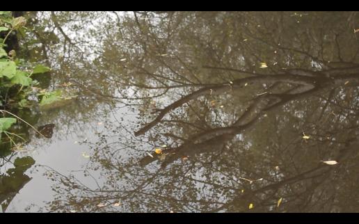 Screen Shot 2014-12-08 at 02.05.05