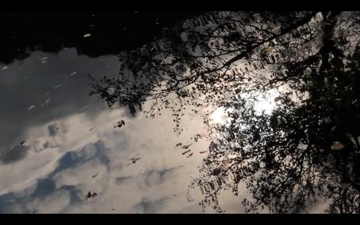 Screen Shot 2014-12-08 at 02.05.22