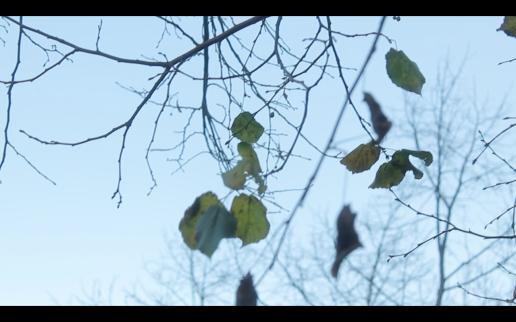 Screen Shot 2014-12-08 at 02.16.45
