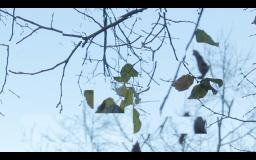 Screen Shot 2014-12-08 at 02.19.59