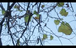 Screen Shot 2014-12-08 at 02.20.07