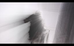 Screen Shot 2014-12-08 at 03.26.33