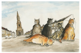 Berwick Cats colour